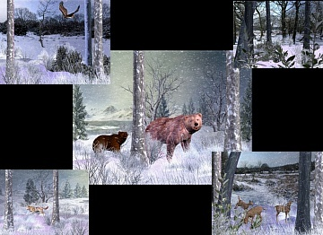 Download Wildlife and Snow wallpaper